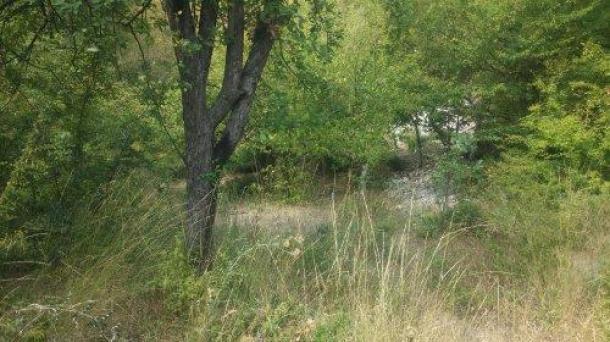 №217 Продается земельный участок на ЮБК