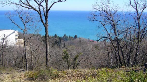 №313 Продам земельный участок в Крыму