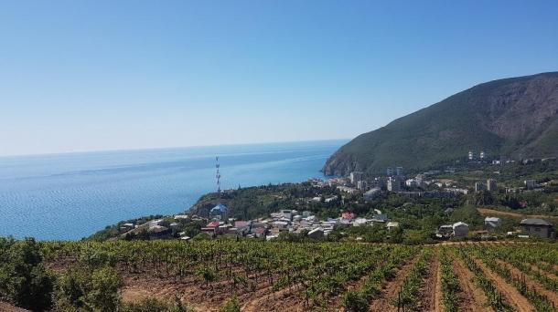 №555 Продам земельный участок в Крыму